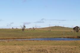 Farm land, Australia, 2012